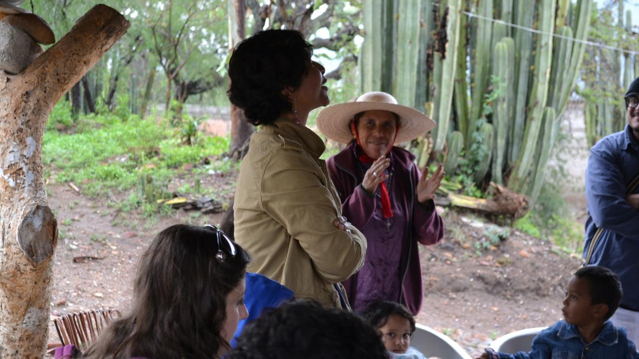 Professor Ruth Trinidad Galván