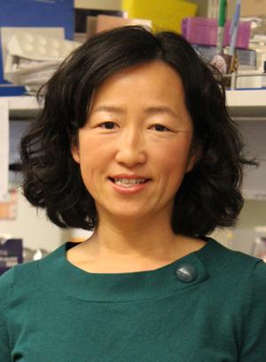 Dr. Eva Chi
