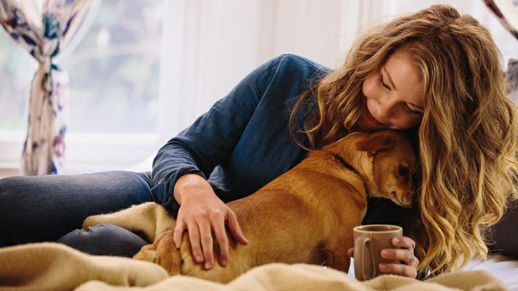 Scholarship available for UNM dog lovers