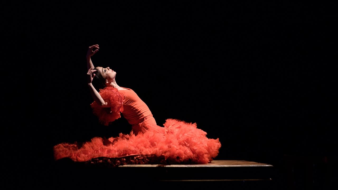 Olga Pericet, a journey through dance