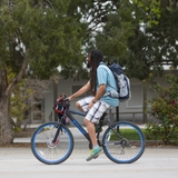 Research shows more bikes equal safer roads for all