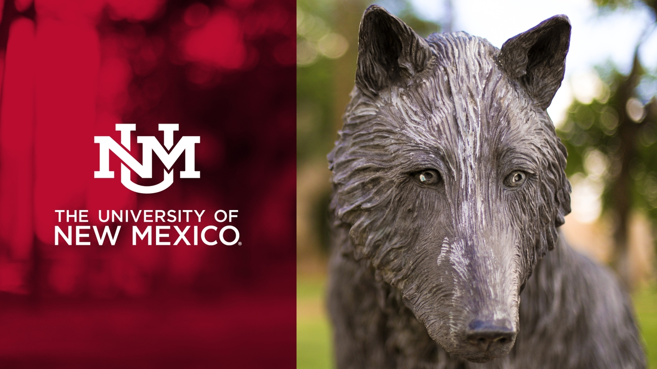 UNM Logo with Pic