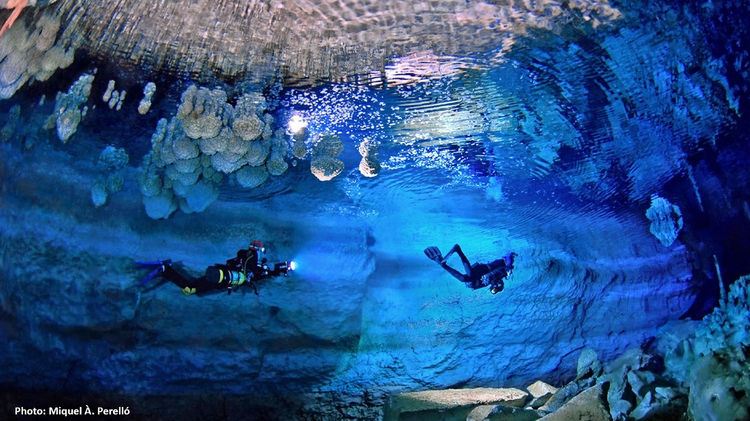Divers head to