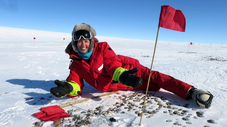 Antarctica meteorite search