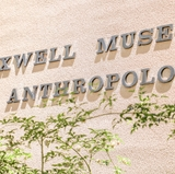 UNM's Maxwell Museum closed