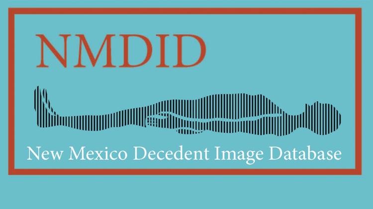 NMDID logo