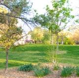 UNM to restrict access to Albuquerque campus beginning April 9