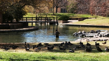 Facilities Management grounds adopts sustainable approach to Duck Pond cleaning