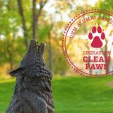 UNM Alumni Association kicks off Operation Clean Paws