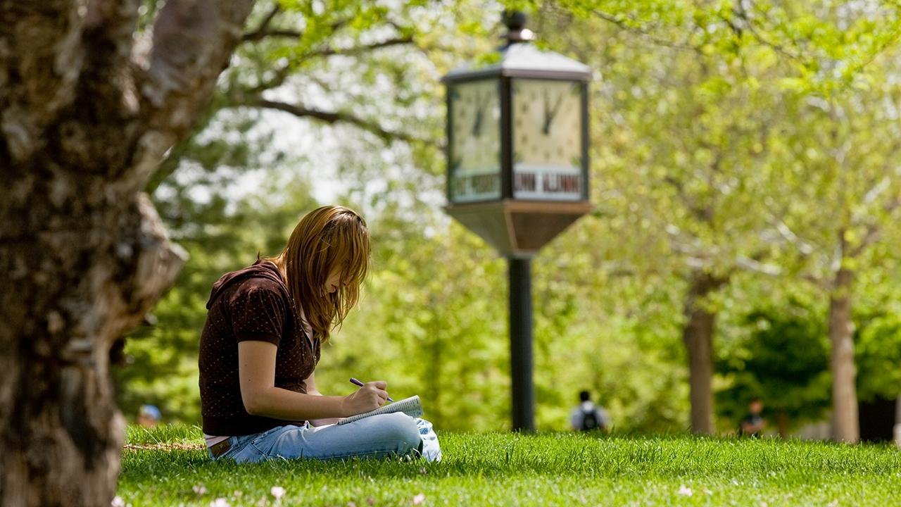 Student study