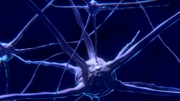 UNM course takes a neuroscientific approach to understanding dreams