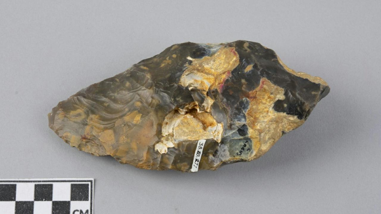 Oldest artifact