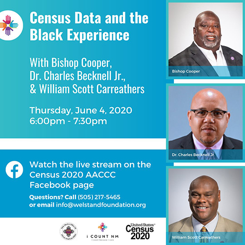 Census Data and the Black Experience