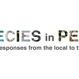 Species in Peril project kicks off fall webinar series
