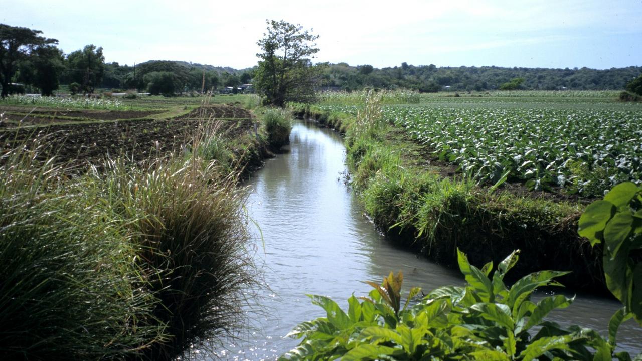 Zanjera Camungao Lateral and Fields
