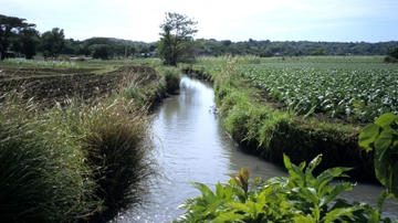 UNM's Rivera publishes book about Filipino irrigation system
