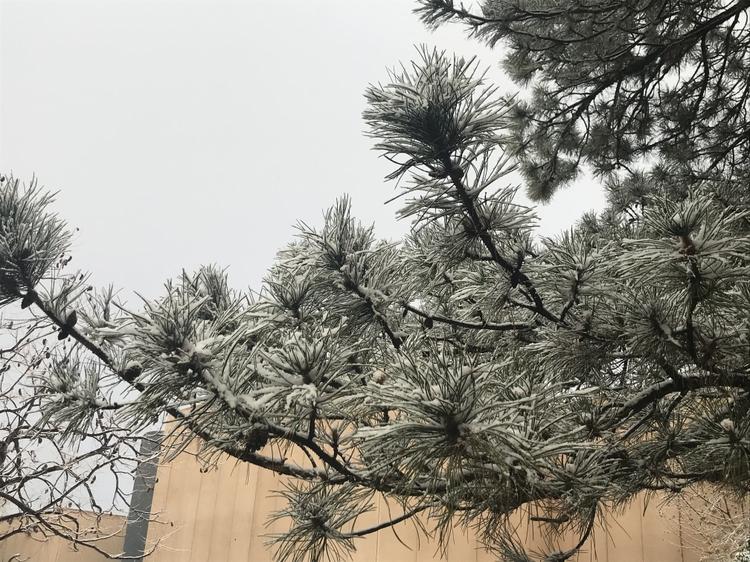 Lingering snow