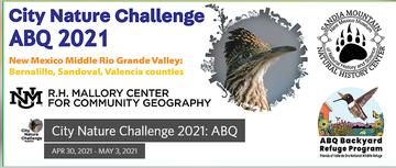 Screenshot_2021-04-19 City Nature Challenge 2021 ABQ 2