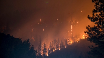 Study: Wildfires threaten river networks in the western U.S.