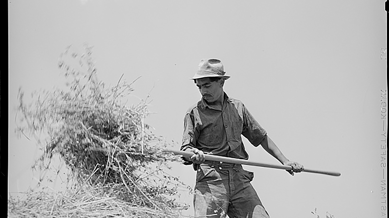 Northern New Mexican farming '40s