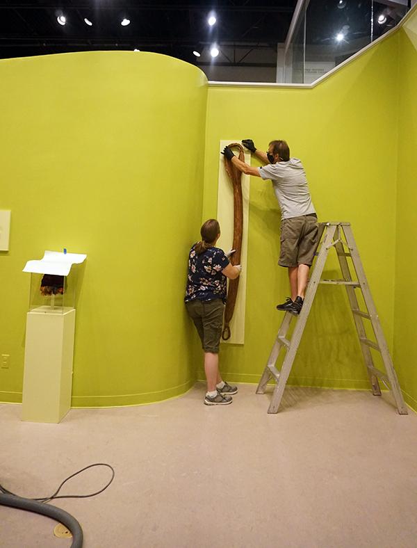 Maxwell Installation Lauren Fuka and Michael Rendina 2