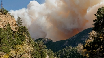 New report: State of the science on western wildfires, forests and climate change