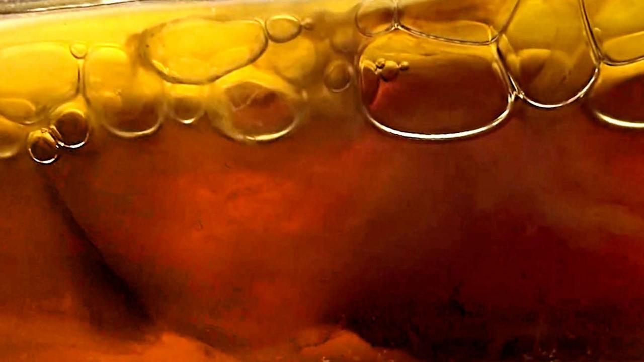 SCOBY bubbles
