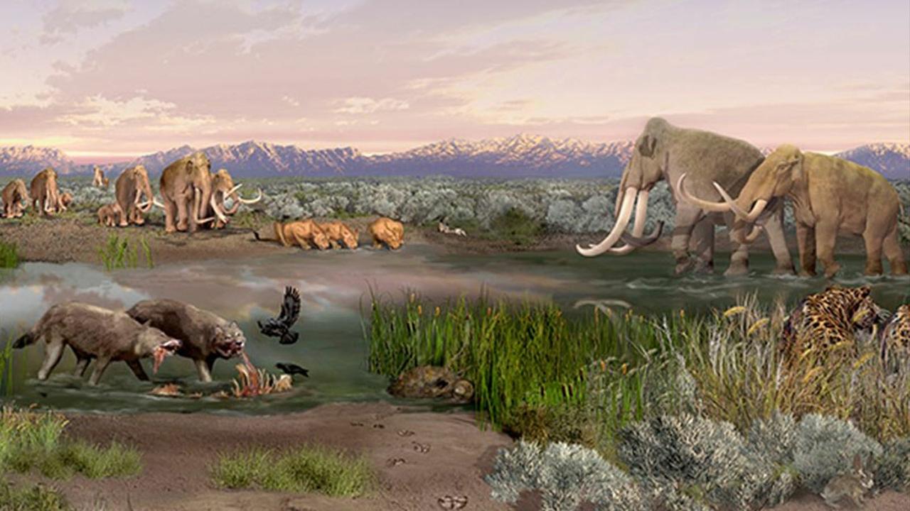 Ancient mammals