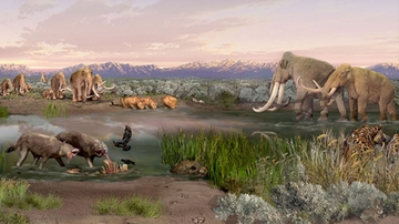 UNM researcher studies ancient mammals to examine Earth's present and future