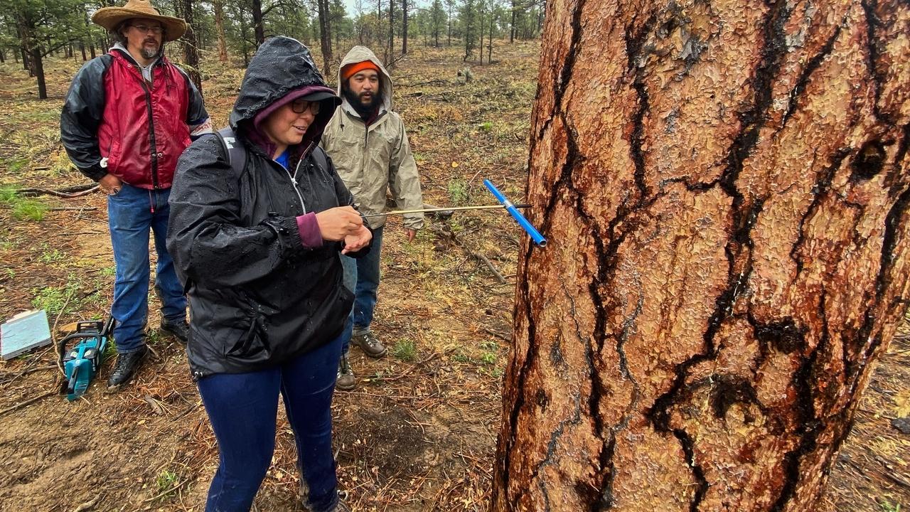 Program focuses on natural resources management at UNM-Taos