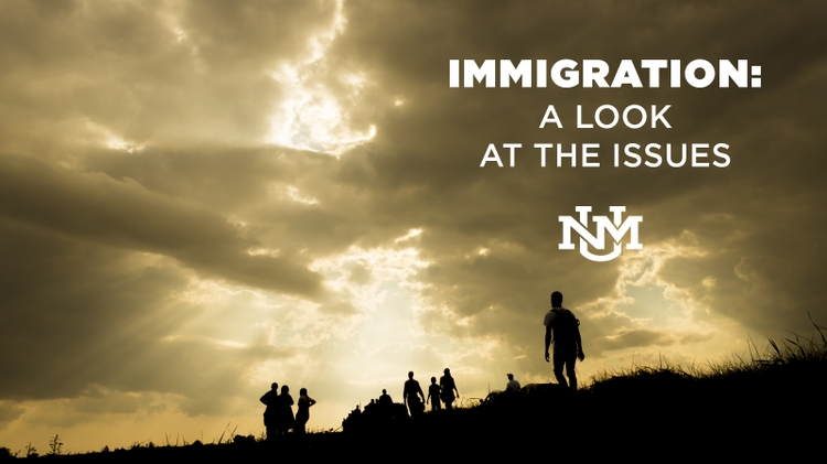 Immigration: A Look at the Issues