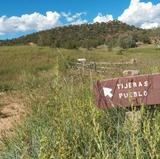 UNM anthropology team analyzes life in pueblo at crossroads