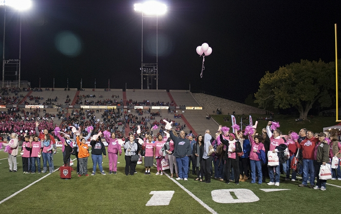 Breast Cancer survivors and their families