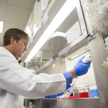 UNM researchers work to better understand Zika virus