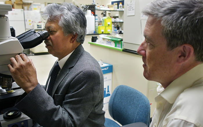 HSC researchers focused on retinal disease