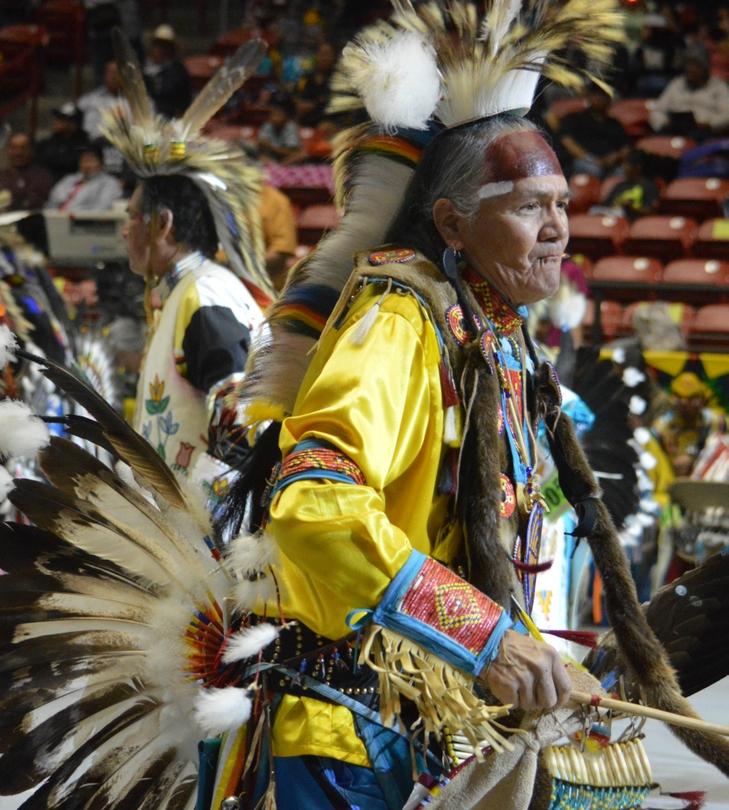 Elder Dancer at Gathering of Nations