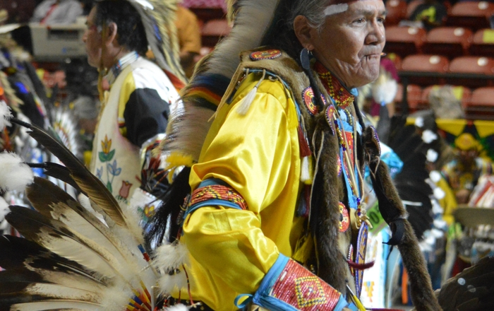 Elder Dancer at Gathering of Nations