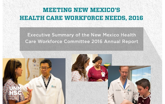 Executive Health Care Workforce Summary