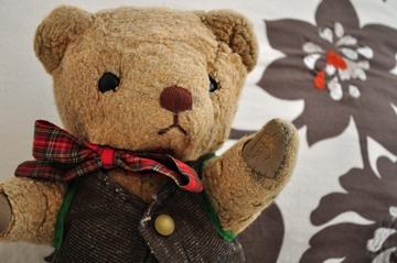 Teddy Bear Health Care