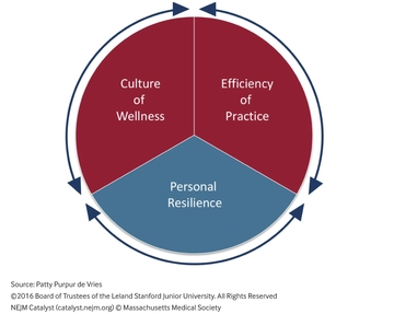 Reciprocal Domains of Physician Wellbeing
