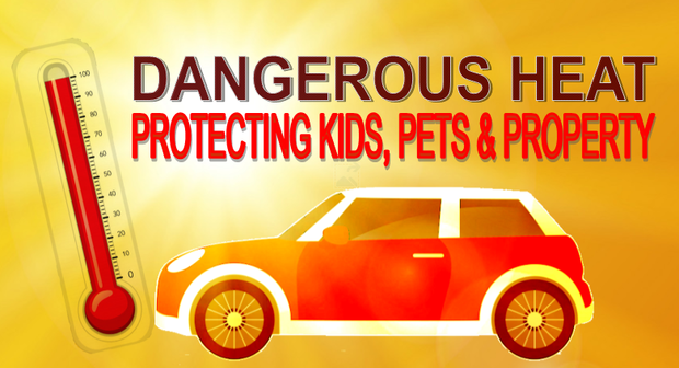 Protecting Kids and Pets Hot Cars GFX