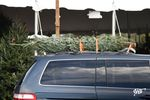 AAA Has the Scoop on Safely Transporting a Christmas Tree