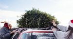 AAA Offers Tips To Safely Transport Your Christmas Tree