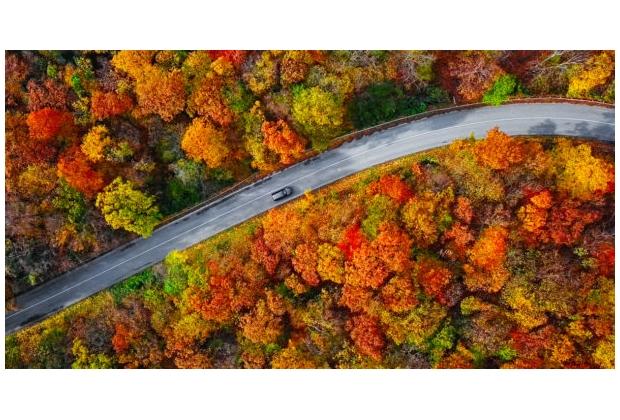 Thanksgiving-Travel_1200x628-610x319
