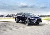 TCI Lexus May RXL 10