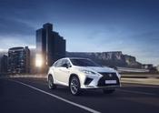 2020 Lexus RX Reveal