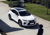 2020 Lexus RX350 FSPORT MC 13