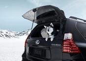 2022 Lexus GX Black Line 5
