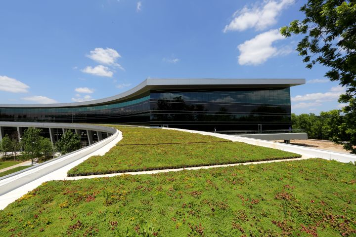 Green Roof - TCE