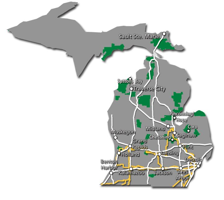 Michigan Service Map 2017